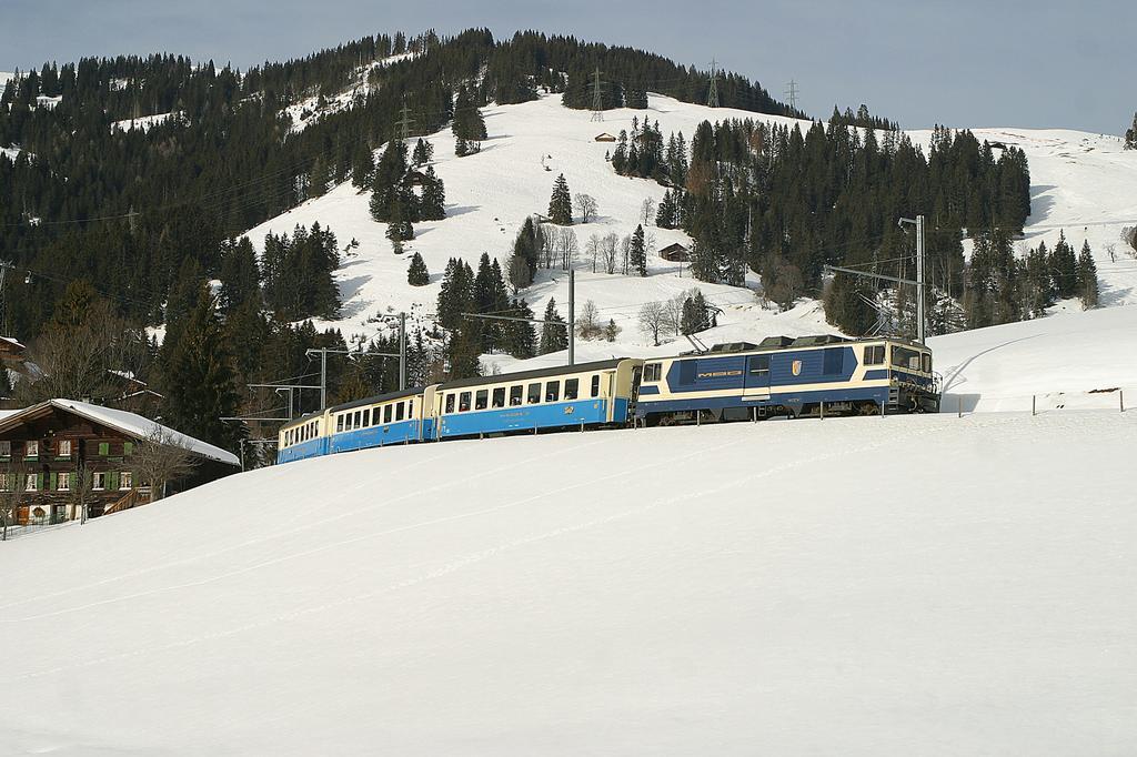 Photo d'une GDe 4/4 6001-6004, Prise à Schönried le 2 février 2004 02:20