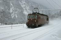 """photo d'une """"Re 4/4 161-195"""" prise à Blausee-Mitholz"""