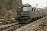 "photo d'une ""Ae 610 (Ae 6/6) 11403-11520"" prise à Ziegelbrücke"