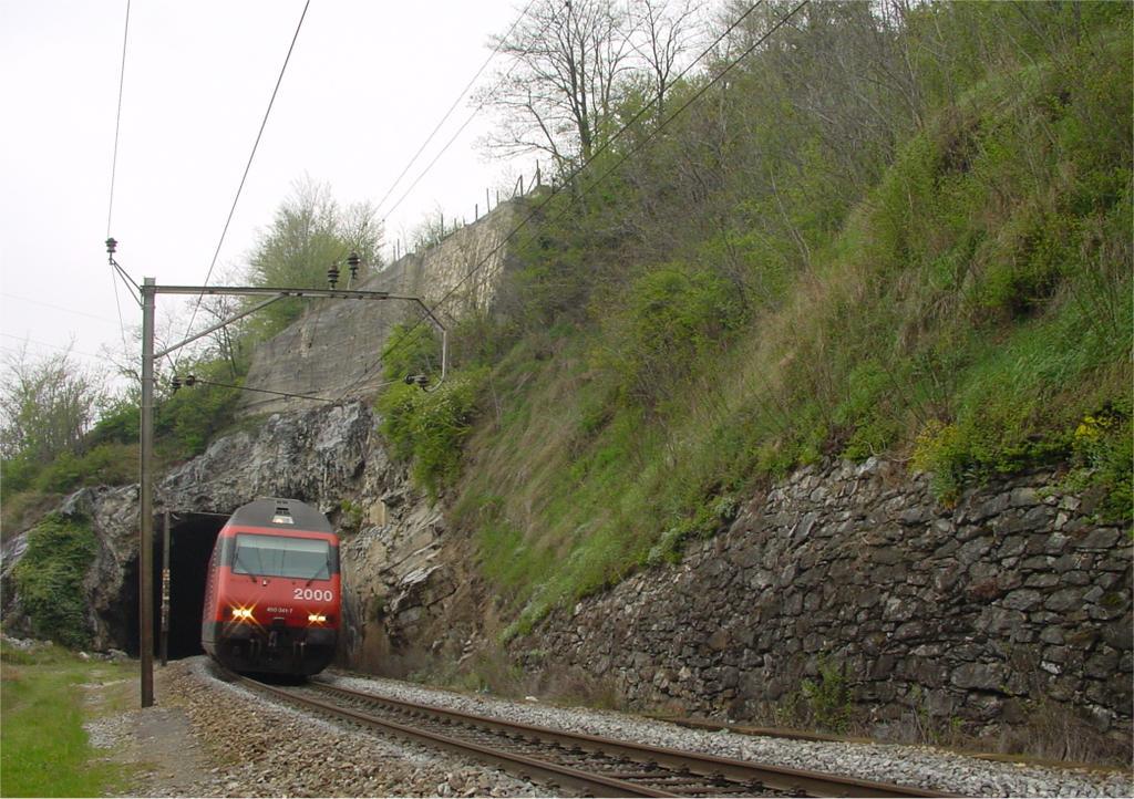 Photo d'une Re 460 000-118, Prise à Leuk le 9 avril 2002 01:23
