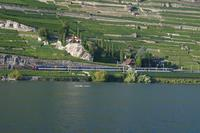 """photo d'une """"RBDe 560 001-083 100-135"""" prise à St-Saphorin"""
